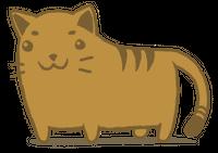 Vaya gato!